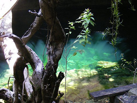 Flooded Caves at the Lucayan Park