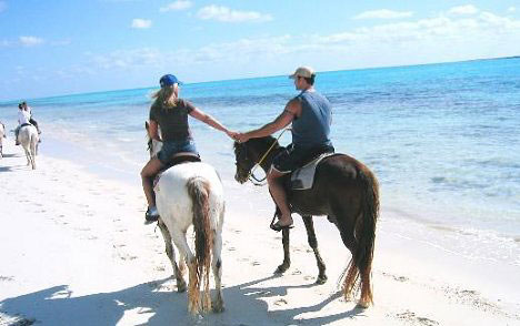 Honeymoon Horse Ride in Freeport