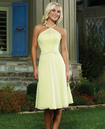 Ray Lia Designs, 2011 bridesmaids dress 6007