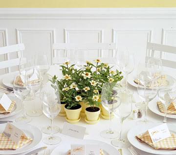 potted daisies | centerpiece/wedding favour idea