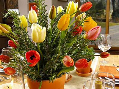 Potted tulips, wedding centrepiece