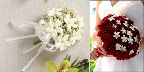 Stephanotis: bridal corsage & bouquet
