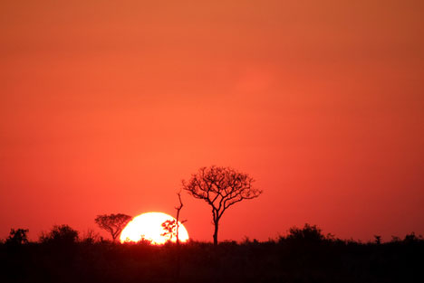 Sunrise, somewhere in Africa