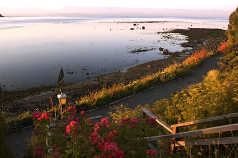 Vancouver Island, Sooke House | View of the Low Tide, by the Gardens