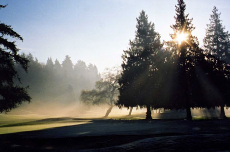 The gorgeous greens, at Vancouver's Marine Drive Golf Club