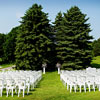 Decades old trees mark the perfect placeto pledge a lifetime of love